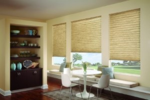 Cellular-Shades-Delaware-County